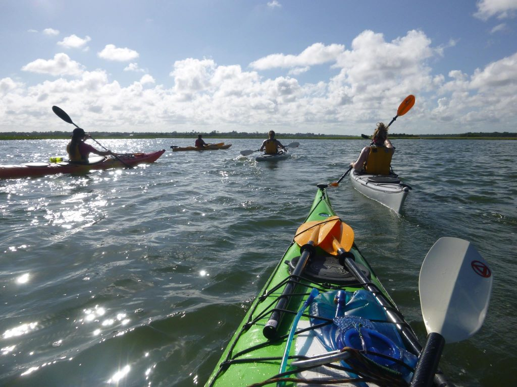 Kayakers in the water