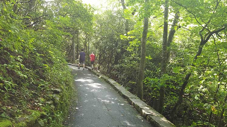 Two boys walking a paved walking trail in the Pisgah Forest