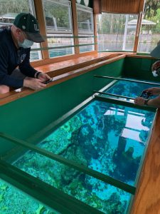 man looking down in a glass bottom boat