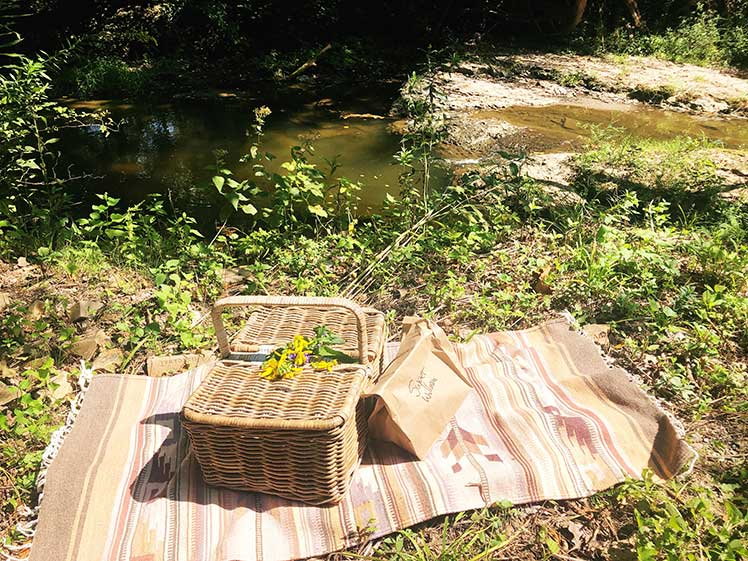 blanket with a picnic basket placed by a creek